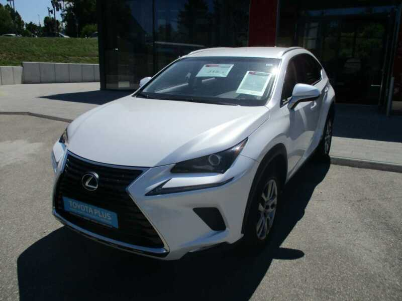 Lexus NX 300h E-FOUR Executive Line Navigation/Leder